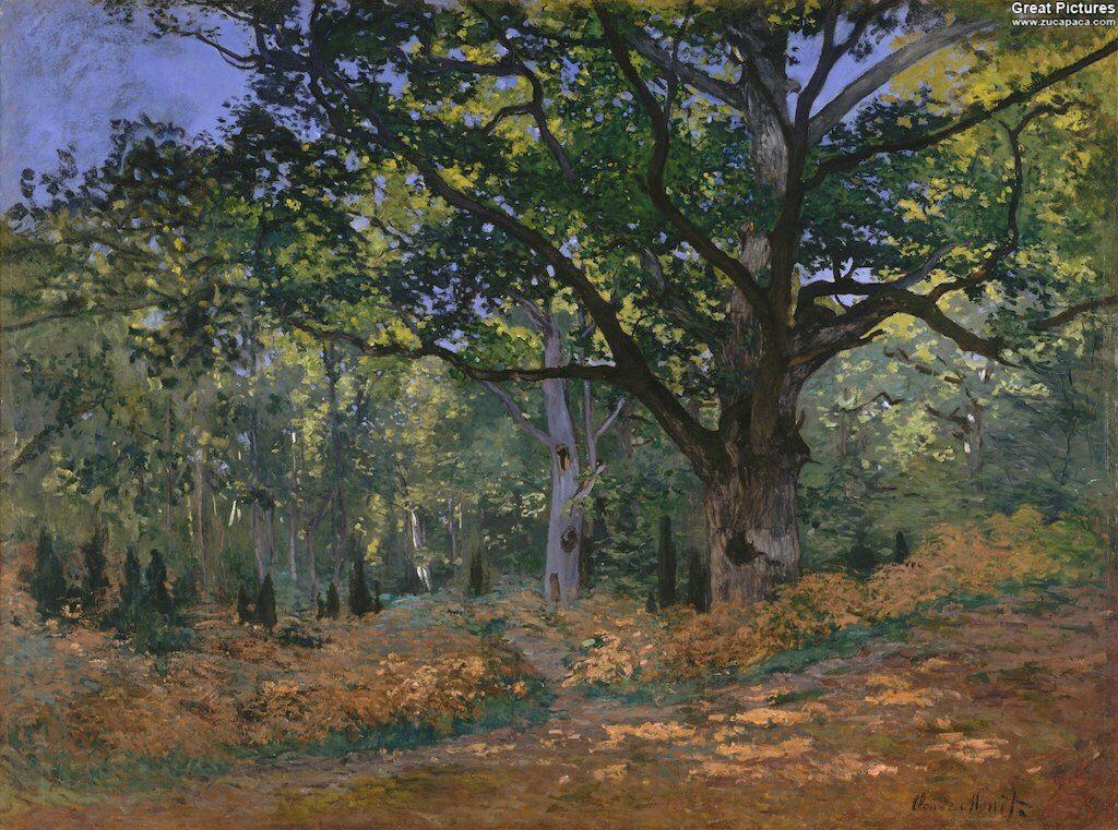 Claude Monet: The Bodmer Oak, Fontainebleau Forest, 1865. Oil on canvas, 96.2 x 129.2 cm. Metropolitan Museum of Art, New York