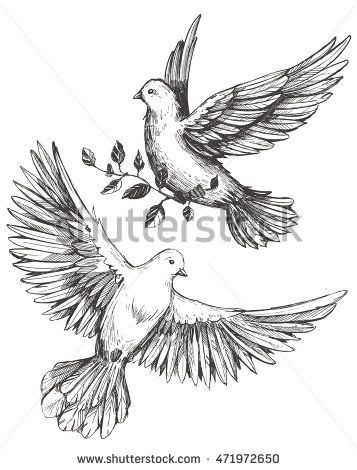 Image result for dove drawing dove pinterest tattoo for Two doves tattoo