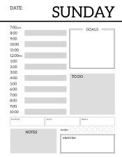 Daily Planner Printable Template Sheets  Daily Planner Printable