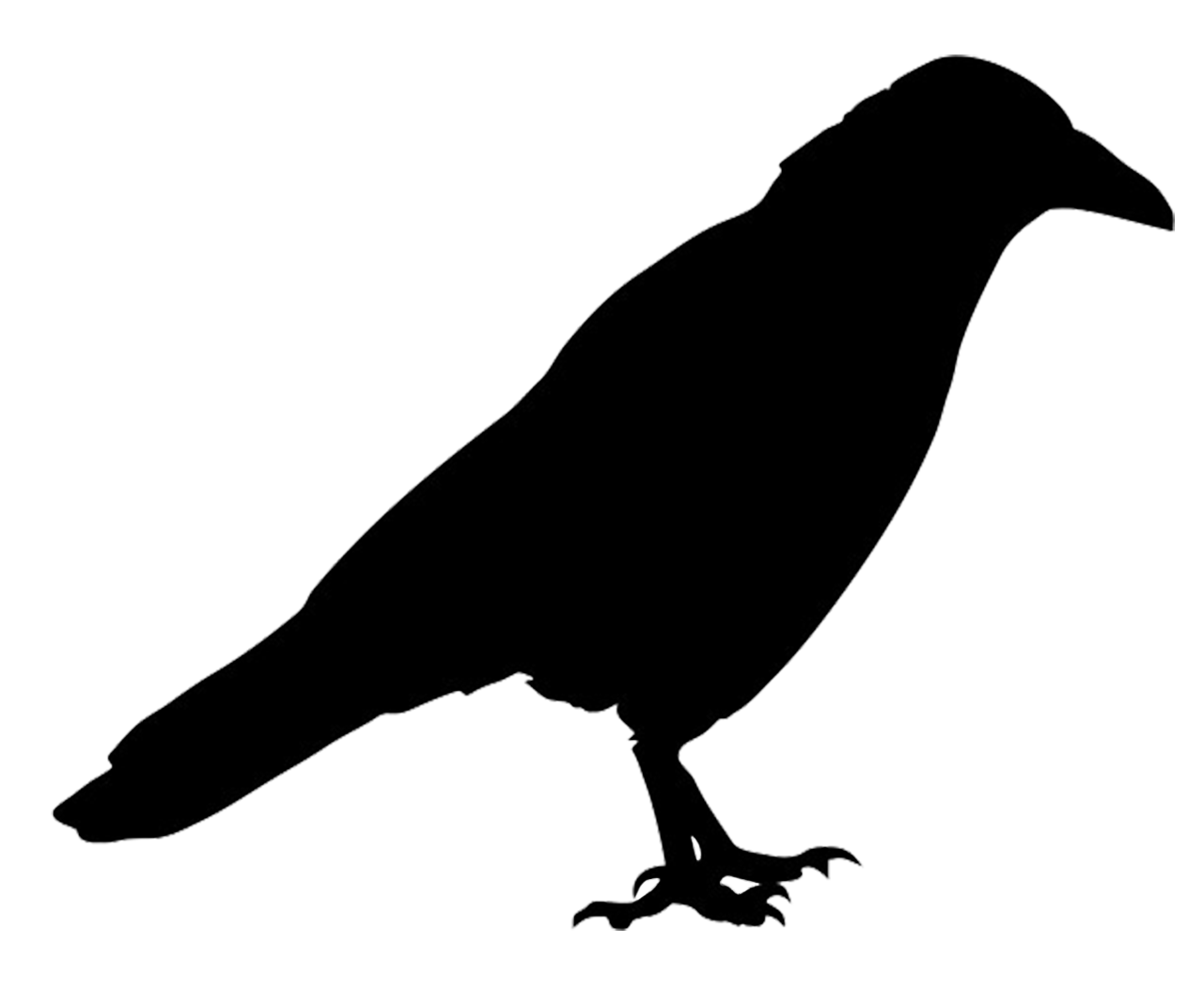 It is an image of Irresistible Printable Hawk Silhouette for Window