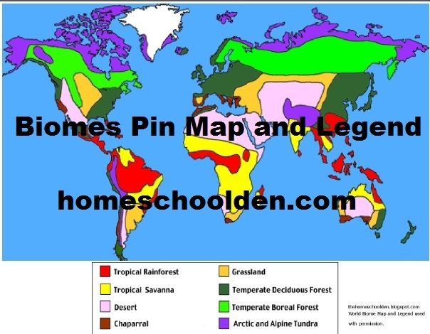 World Biomes Pin Map Pieces page 1 – Biomes of the World Worksheet
