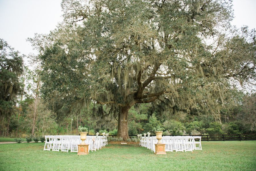 Outdoor Shabby Chic Rustic Wedding Ceremony Under Spanish Moss Tree With  White Resin Folding Chairs |