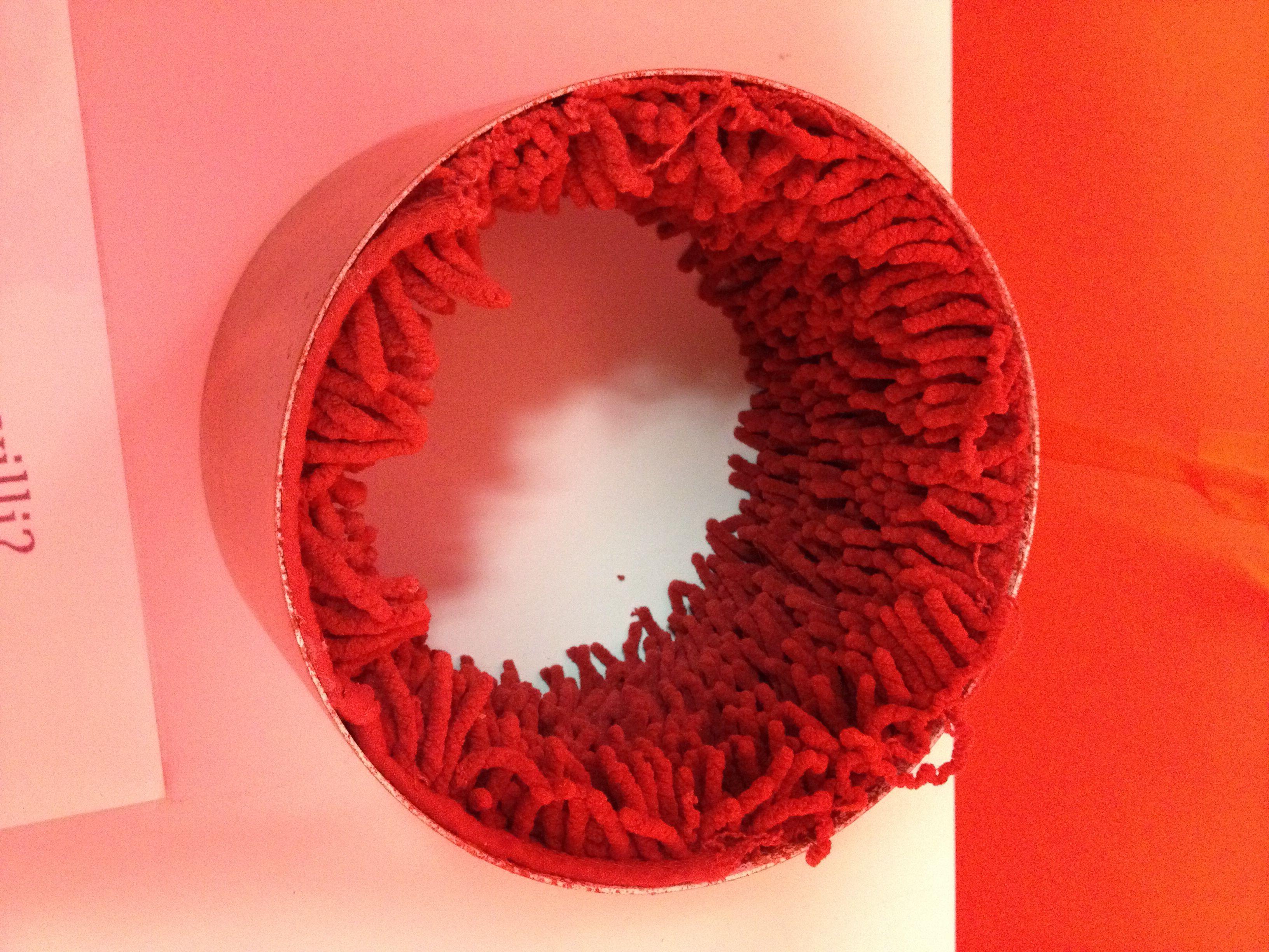 Model Showing Villi Inside Intestine