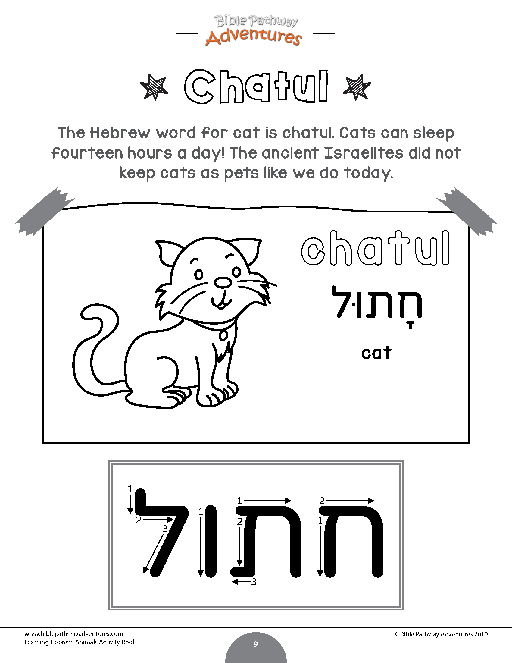 The Hebrew Word For Cat Is Chatul