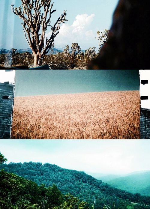 The Hunger Games Scenery Hunger Games Hunger Games Movies Hunger Games Trilogy