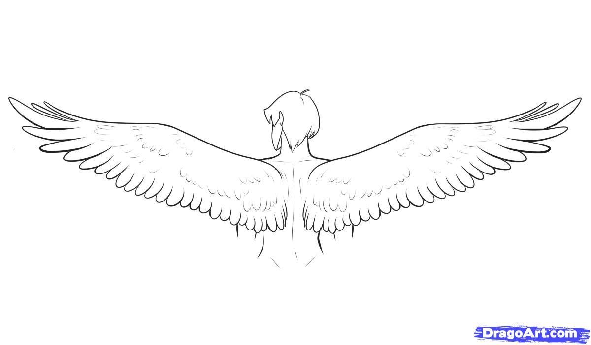 Angel Wings Drawing Tutorial Dromgdi Top With Images Wings