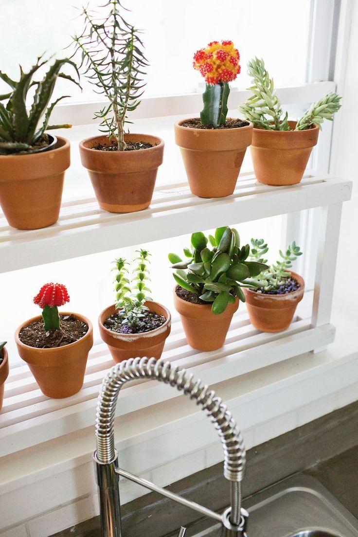 Diy Window Ledge Plant Shelf Herb Garden In Kitchen Plant