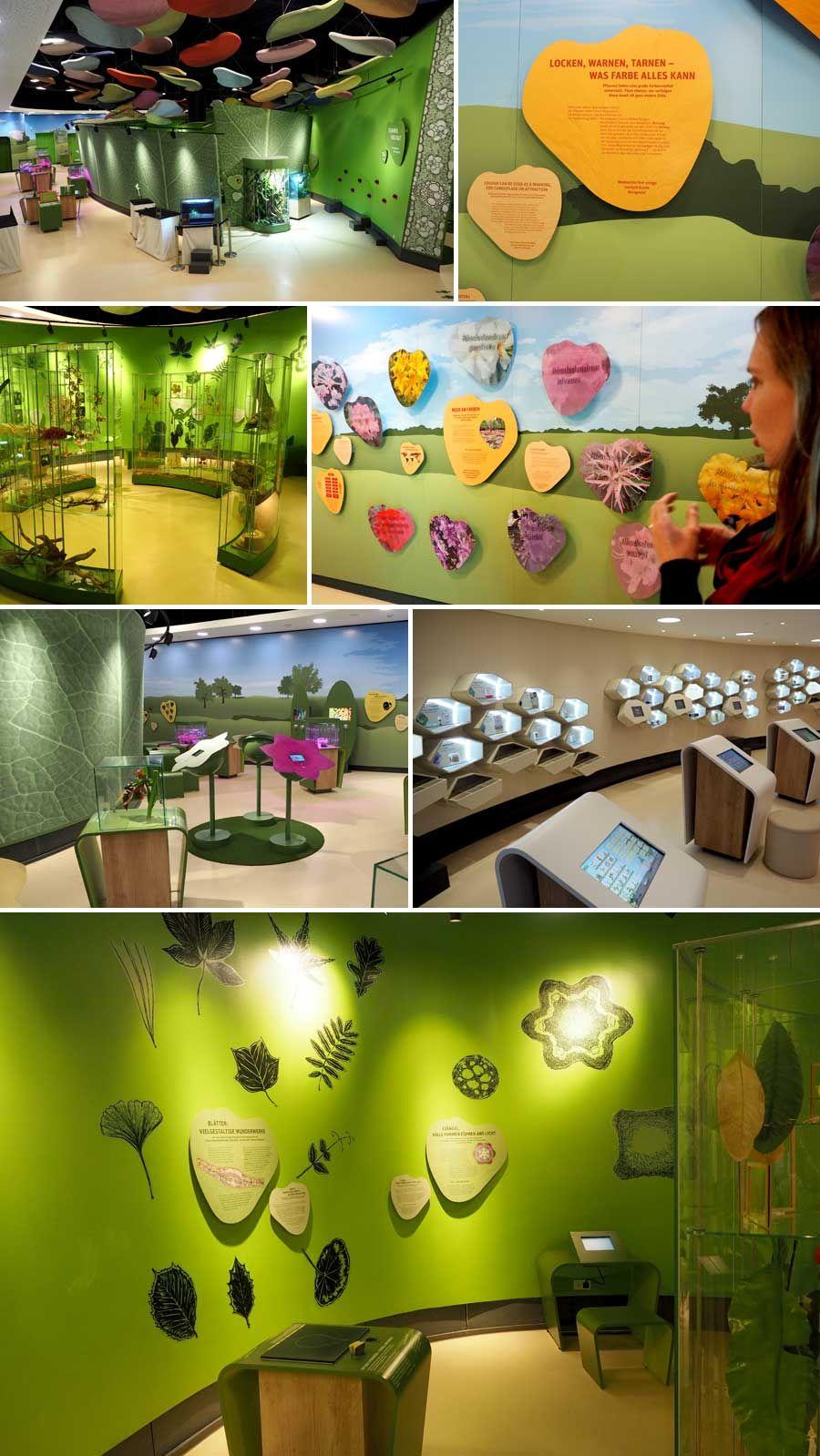Die Vielfaltigkeit Der Pflanzenwelt Spiegelt Sich Auch In Der Gestaltung Der Ausstellung Wider Pflanzenwelt Pflanzen Tourismus