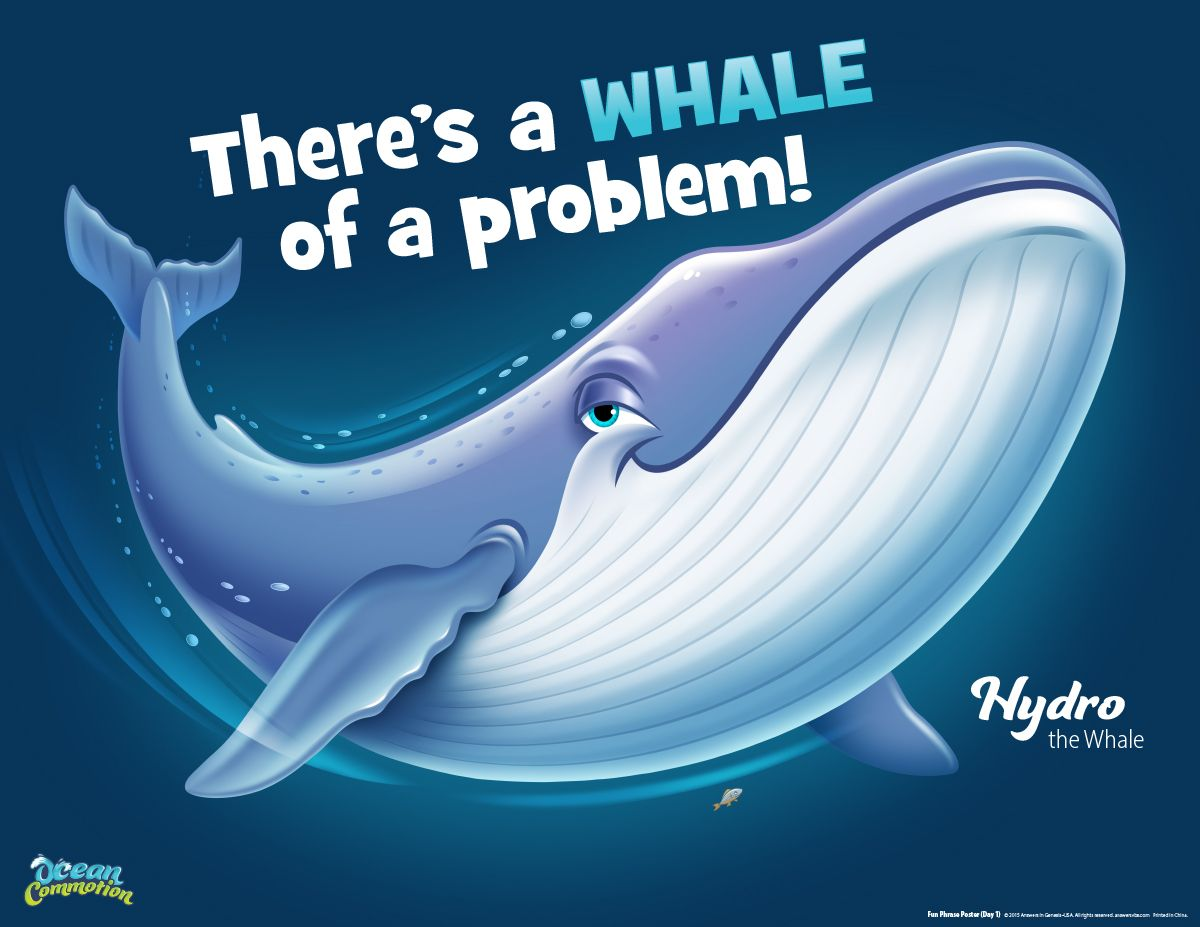 0cean coloring pages - Day 1 At Ocean Commotion Hydro The Whale Will Remind Kids That We Have A