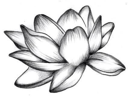 La consapevolezza della propria natura e della propria forza, la capacità di non farsi contaminare negativamente da questo mondo.  Purezza.