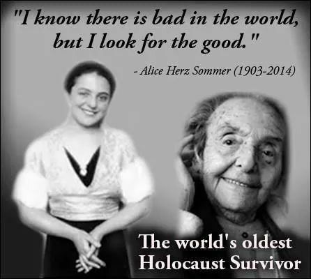 Holocaust Survivor Quotes Mesmerizing I Have Read Her Amazing Biographyr.i.pbrave Woman Xxx