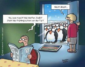 Pinguin Witz