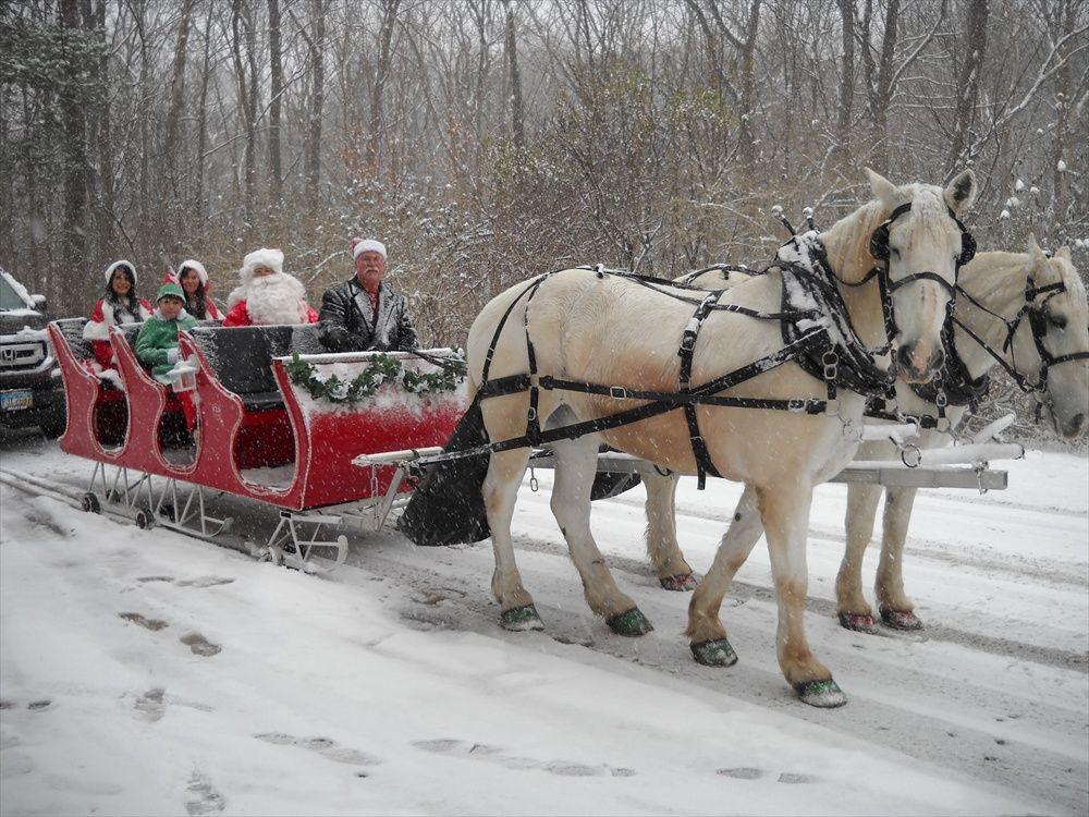 holiday | Travel North Dakota |Horse Drawn Sleigh Rides Christmas