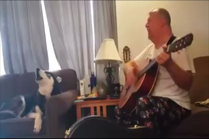 Northern Michigan Dog Named National Singing Competition Finalist