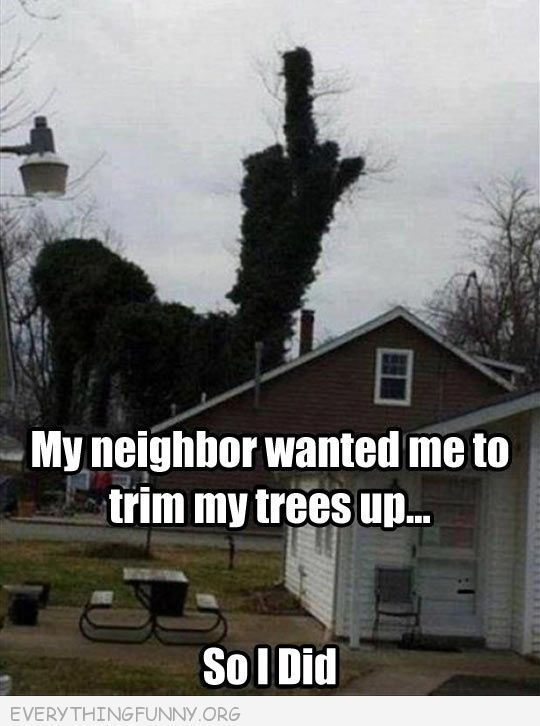 398d468b7f197c6aa0187fa2cea15257 funny caption pictures my neighbor asked me to trim my trees