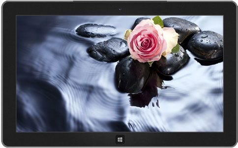 Roses Theme Microsoft Windows Flowers Flower Pictures Rose Wallpaper