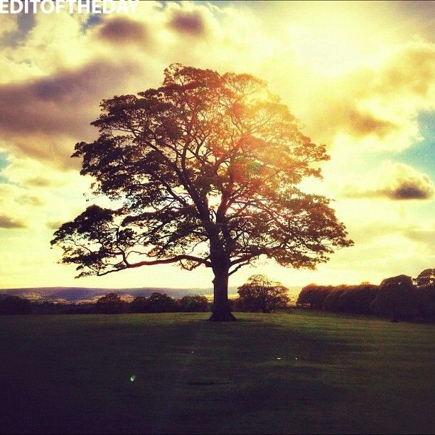 •• EDITOFTHEDAY •• DAY: 15 May 2012 WINNER: @smithy_