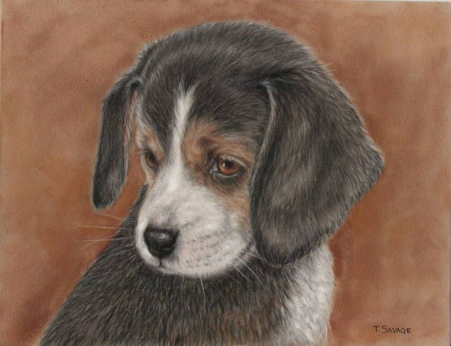 Beagle Pup By Terry Savage Beagle Puppy Beagle Art Beagle