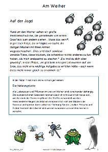 Free: Spaziergang am Weiher / Lesetexte, Lieder, Arbeitsblätter ...