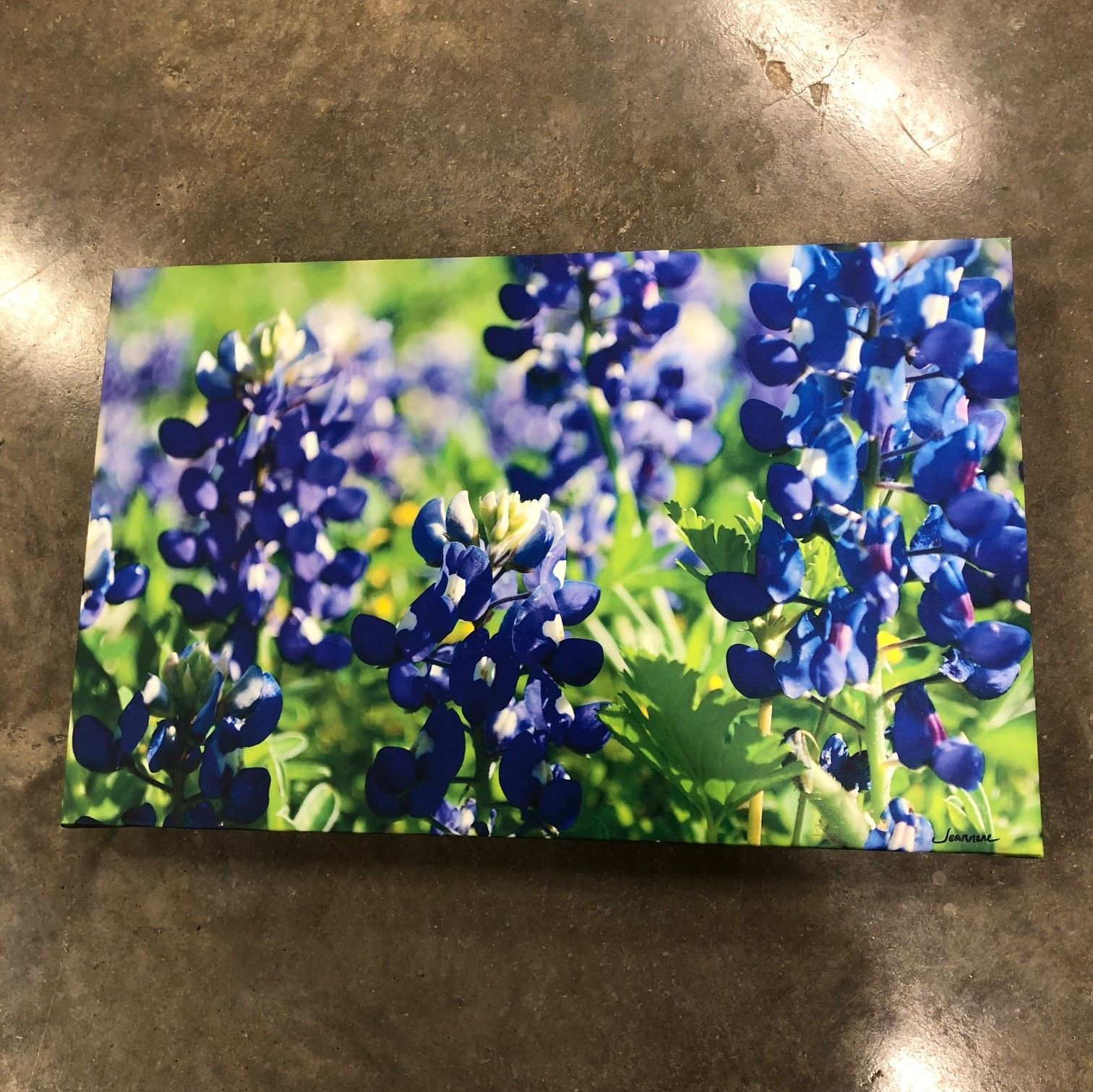 Custom built and stretched canvas prints from your high