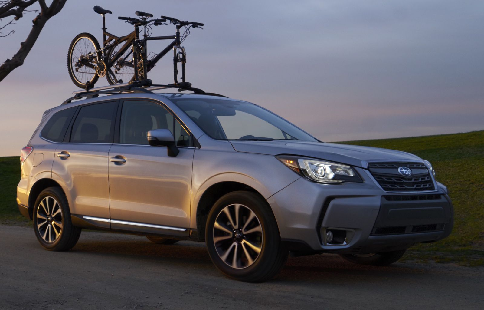 2016 2017 Subaru Forester For In Your Area Cargurus