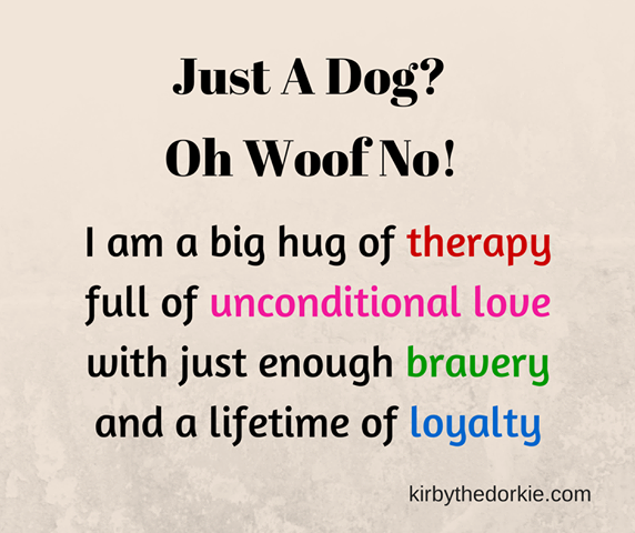 My Dog Loves Me Quotes: Just A Dog? To Me My Dog Isn't A Dog He Is My Furry Little