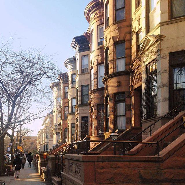 Stuyvesant Avenue Bed Stuy Brooklyn Nyc Brooklyn Brooklyn