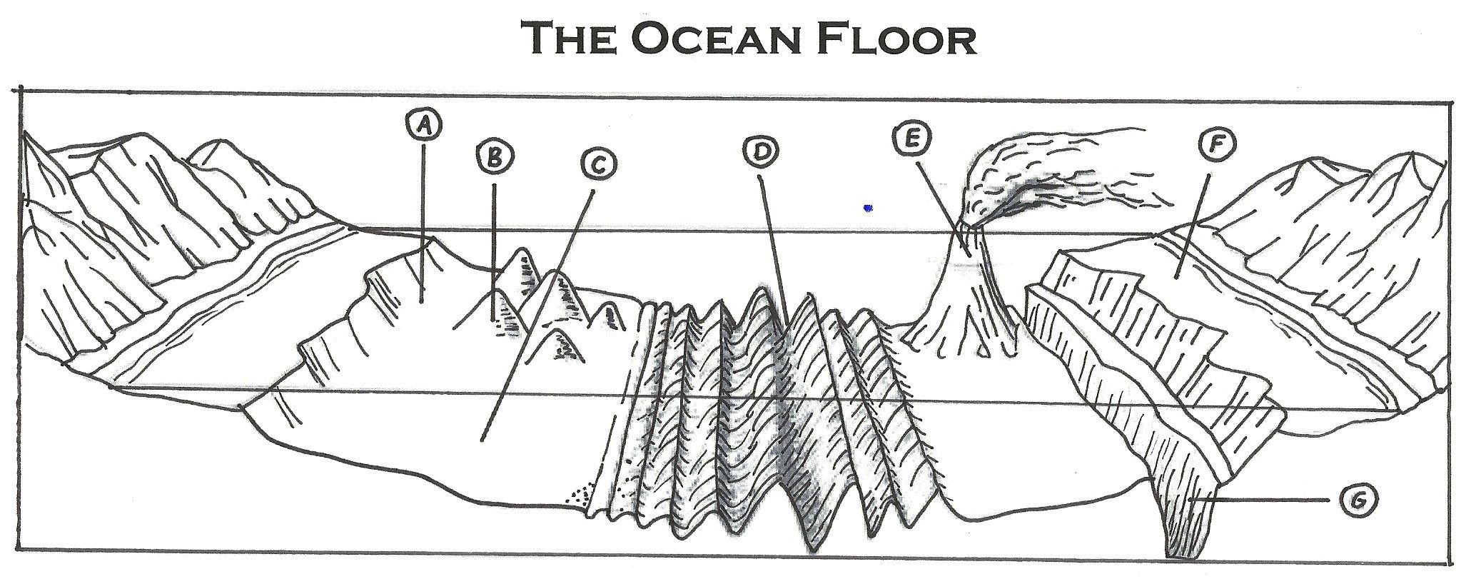 Exploring The Ocean Floor Worksheet Answers