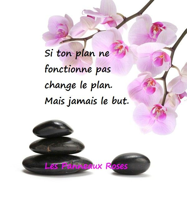 Change le plan non le but