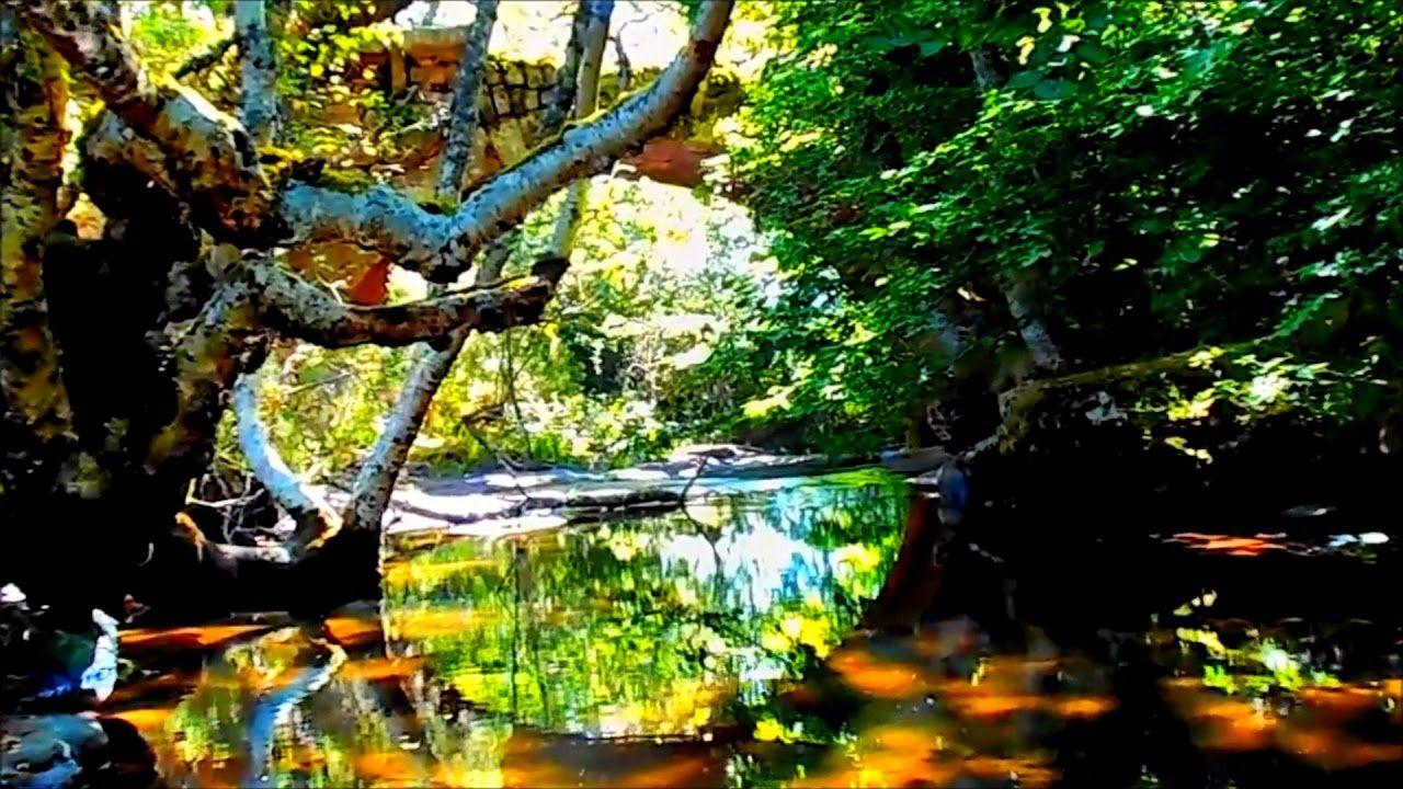 Pequeños Paraísos Puente Romano Sobre El Río Camesa Valberzoso Palencia Romanos Puentes Paraiso