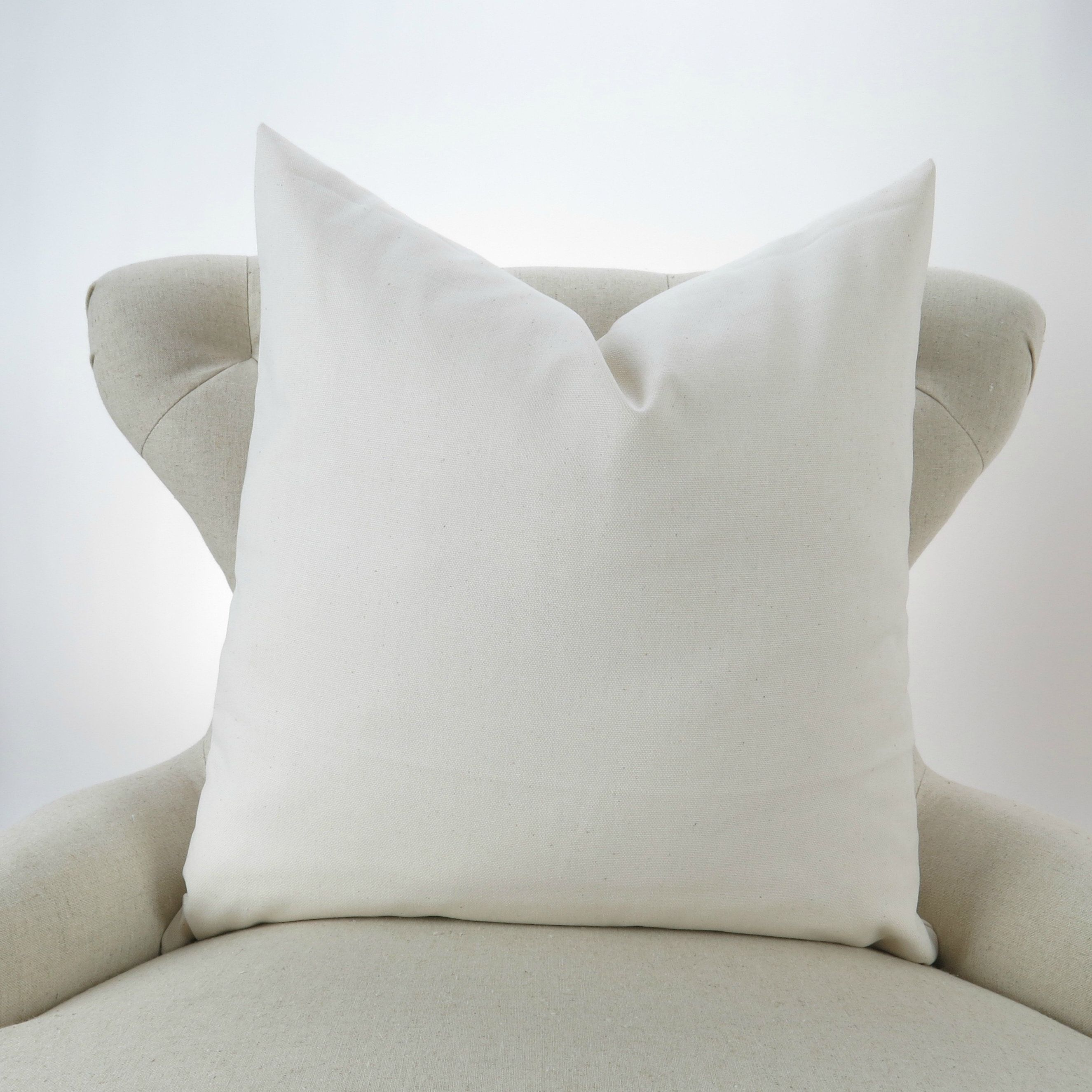 Throw Pillow Cover, Decorative Cushion