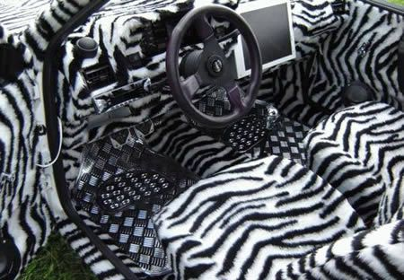 Wow Talk About A Loud Interior Zebra Print Can Be Nice