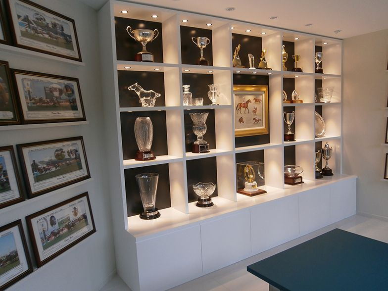 Custom made trophy and display cabinet with feature