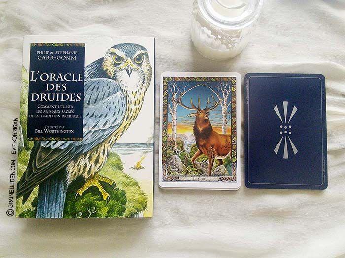 L Oracle Des Druides De Philip Et Stephanie Carr Gomm Tarot Animaux Sacres Tarot Carte