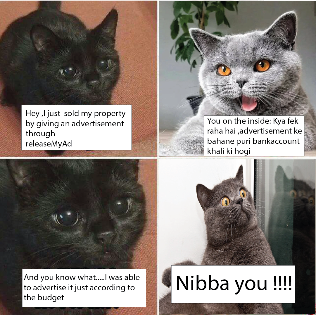 Meme Generator Memes Blog Social Media Visual Representation