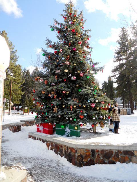 Big Bear Christmas.Big Bear Christmas Tree All About Christmas All Things