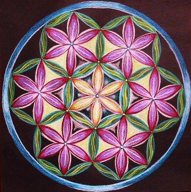 flower of life, made by petra