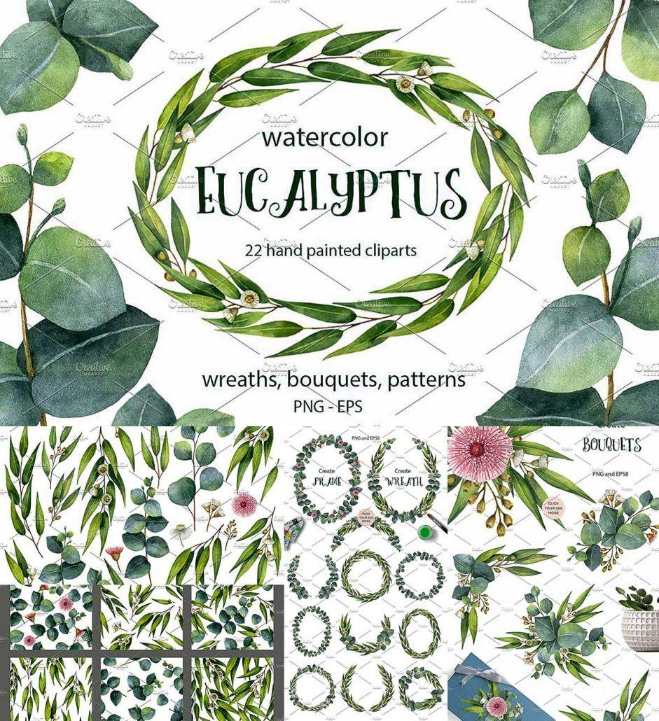 Watercolor Eucalyptus Free Flower Clipart Wreath Watercolor