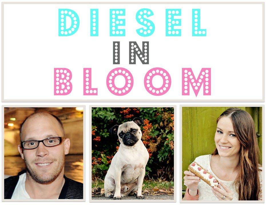 Diesel in Bloom Cardigan Onesies Diy drums, Baby