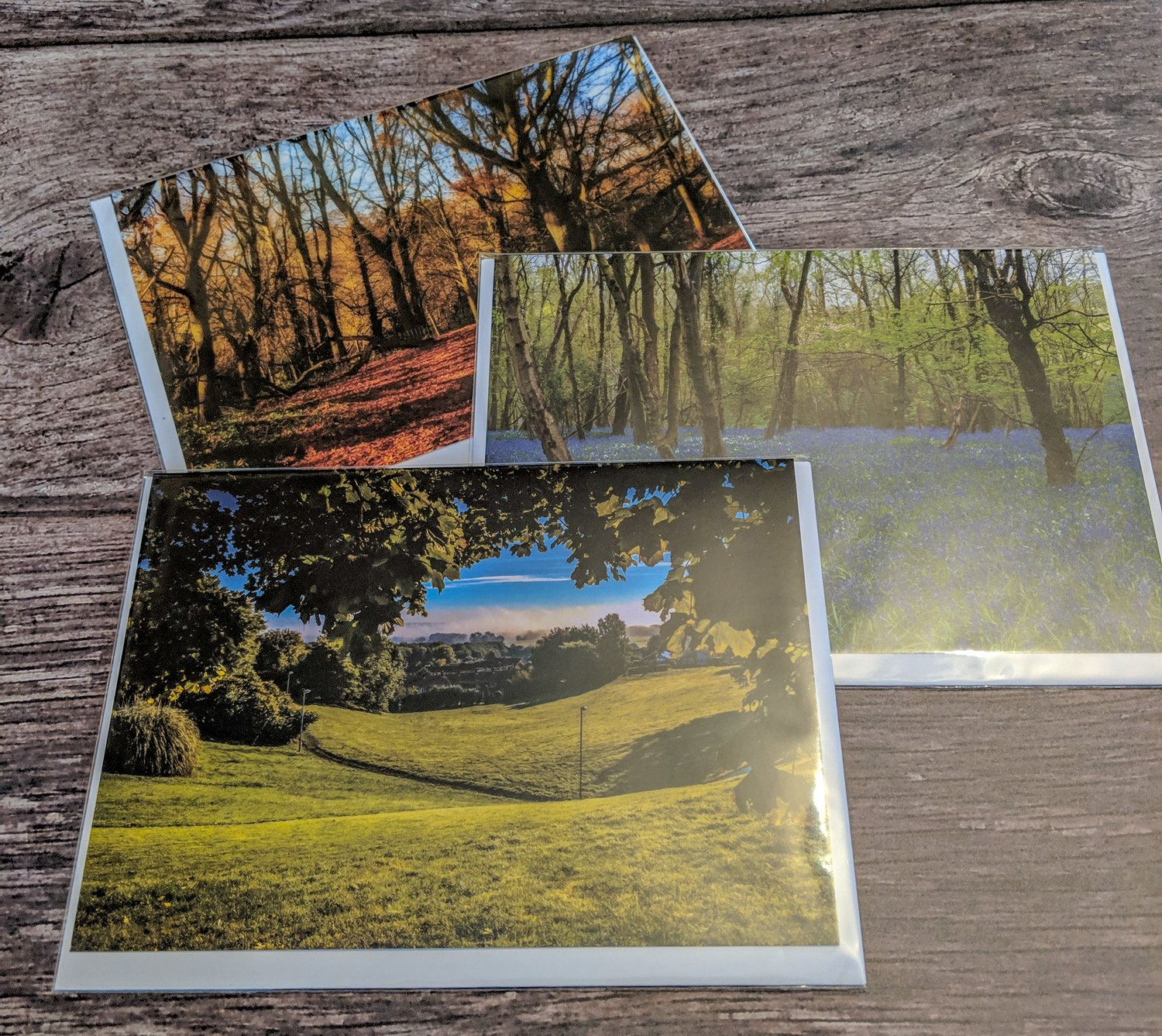 3 Pack Woodland Collection Cards Blank Greeting Card 7x5 With