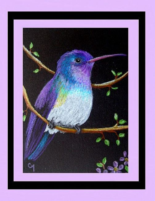 Art: White-chinned Sapphire Hummingbird (SOLD) by Artist Cyra R. Cancel