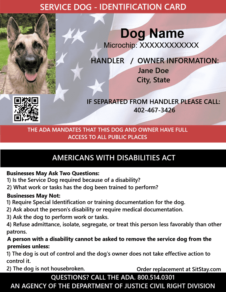 Service Dog Definition Ada Guidelines 25 Cards Service Dogs Dog Identification Service Dog Supplies