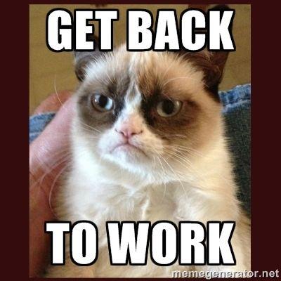 399973e5e38fec0f12682660dc5ad4b2 tard the grumpy cat get back to work entrepreneur pinterest,Cat Boss Meme