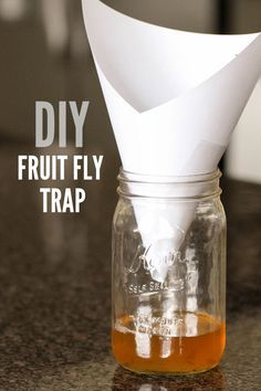 best homemade fruit fly trap tutorial green thumb pinterest diy fruit fly trap fly traps. Black Bedroom Furniture Sets. Home Design Ideas