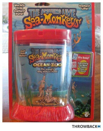 Sea Monkeys Sea Monkeys Monkey Sea