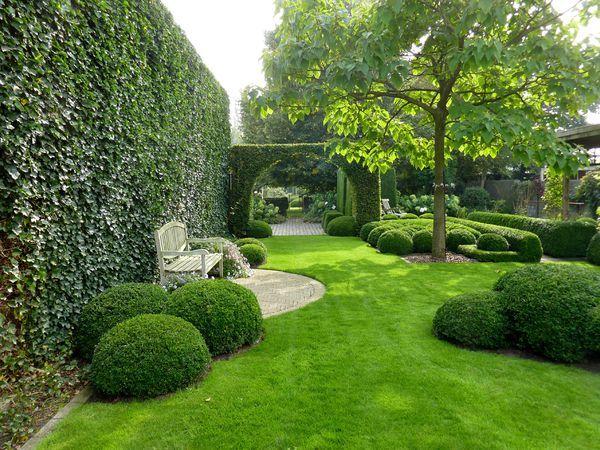 Amenagement Jardin En Longueur Avec Petits Arbustes Boules Avec