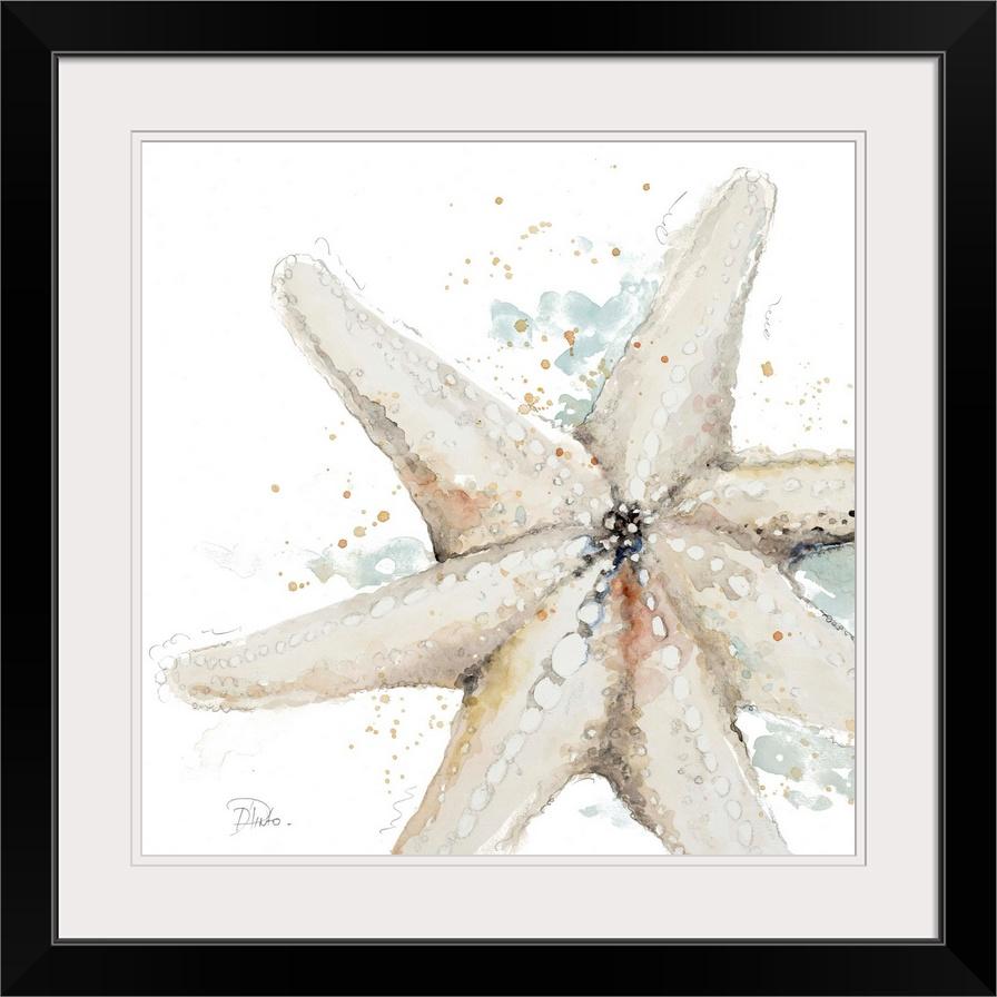 Water Starfish Starfish Wall Art Canvas Prints Starfish Art