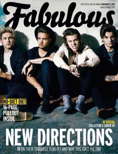 One Direction 1d World Exclusive Uk 1 Day Only Fabulous Magazine November 2015 Ebay One Direction I Love One Direction Directions