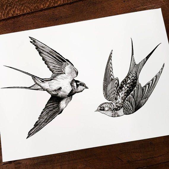 Swallow art print, bird vintage print, animal wall art, swallow tattoo art, bird black tattoo, engraving illustration, animal wall art black