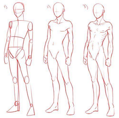 Basic Pose Anatomy Desenho Tutorial Corpo Desenhando Esbocos